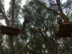 Acromix - Parc aventure dans les arbres